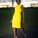 Colourful_Bow_Neck_Tube_Dress